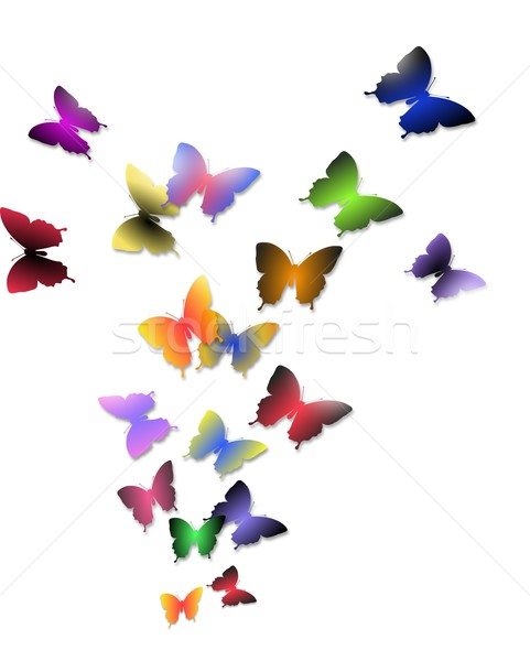 Ilustração vôo colorido borboletas isolado Foto stock © impresja26