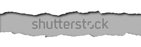 Papel rasgado cinza espaço texto isolado branco Foto stock © impresja26