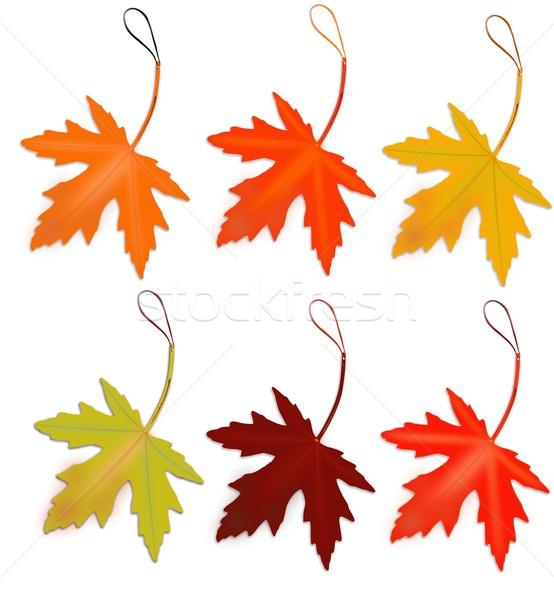 Indirim sonbahar akçaağaç yaprakları arka plan turuncu Stok fotoğraf © impresja26