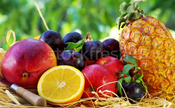 Raw tropical fruits, pineapple and mango Stock photo © inaquim