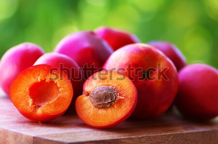Um tabela árvore madeira natureza fruto Foto stock © inaquim