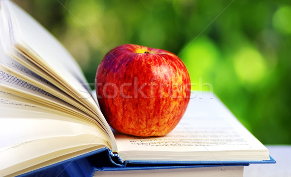 Apple on open book Stock photo © inaquim