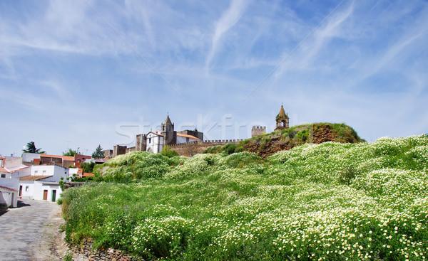 風景 城 南 ポルトガル ツリー 建物 ストックフォト © inaquim