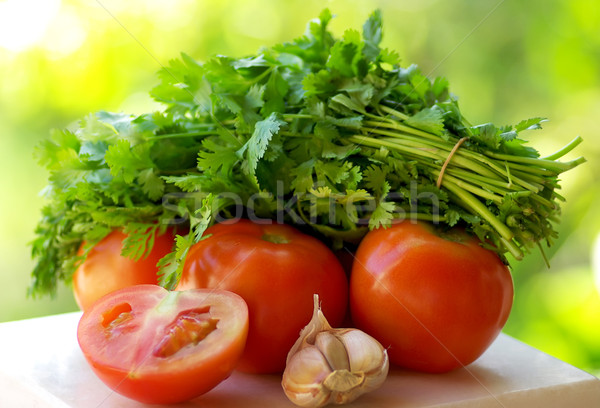 Tomato, garlic and green cilantro. Stock photo © inaquim