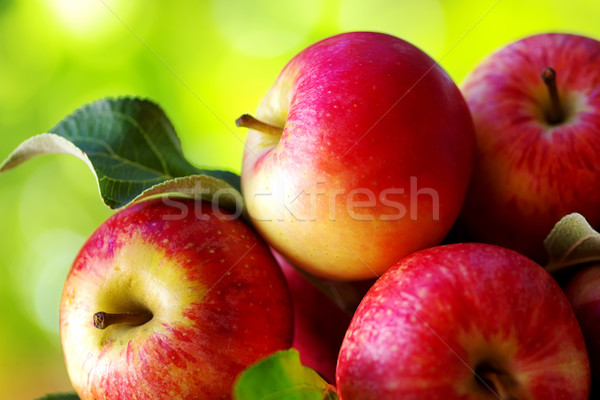 ripe red apples on table Stock photo © inaquim