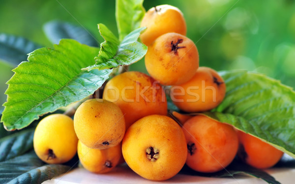 Maduro ramo árvore comida natureza fruto Foto stock © inaquim