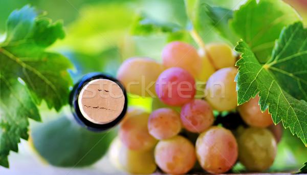 Cortiça garrafa vinho uvas festa natureza Foto stock © inaquim
