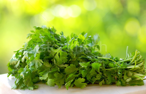 Coriander on green background.  Stock photo © inaquim