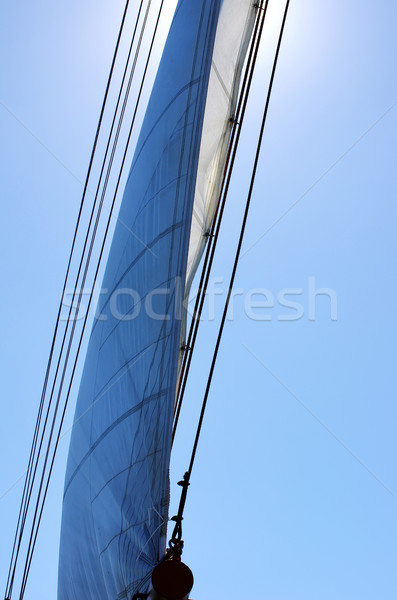 Full Sail on wind Stock photo © inaquim