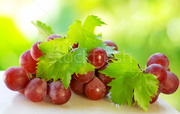 Bunch of grapes  on green background  Stock photo © inaquim