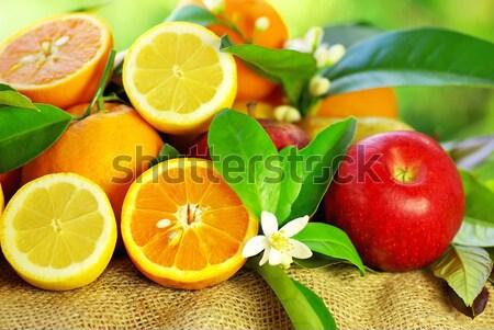 Red apple and lemon slice. Stock photo © inaquim