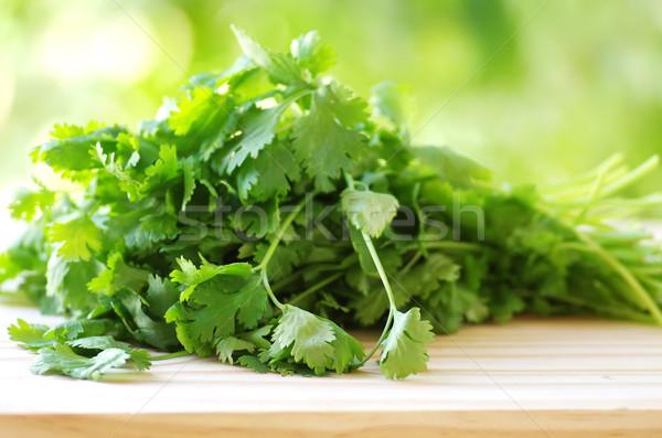 Monte coentro tabela comida cozinha medicina Foto stock © inaquim