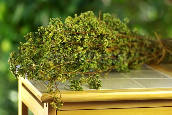 Oregano bouquet on table. Stock photo © inaquim