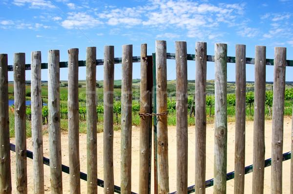 Fechado portão entrada fazenda árvore grama Foto stock © inaquim
