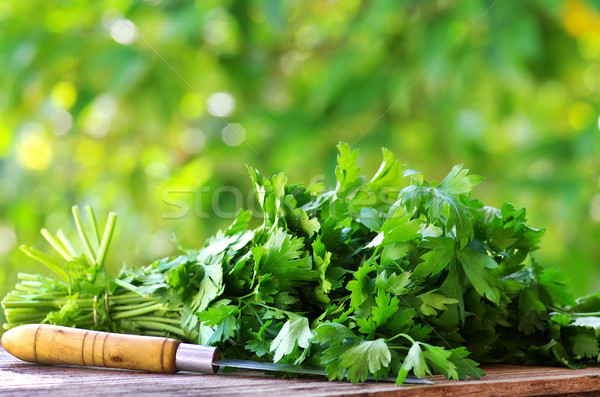 Cilantro herbs and knife. Stock photo © inaquim