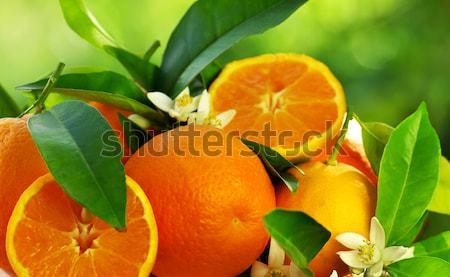 Orange fruits and flowers. Stock photo © inaquim