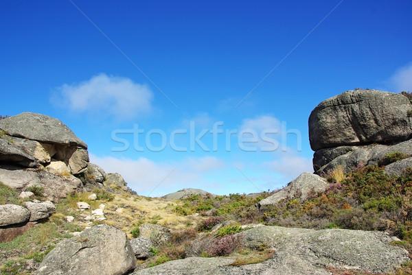 Park Portekiz gökyüzü ağaç manzara dağ Stok fotoğraf © inaquim