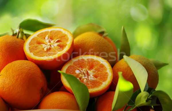 Fresh oranges on a green background Stock photo © inaquim