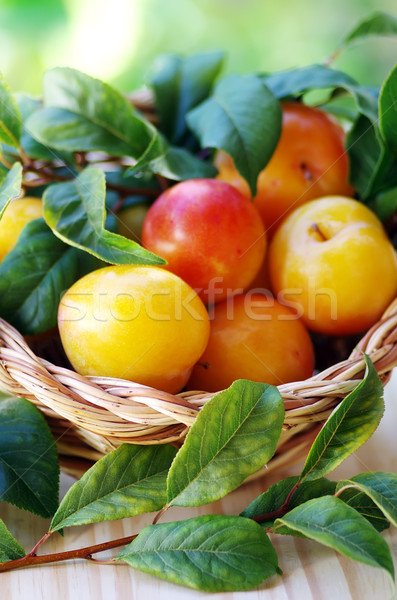 érett citromsárga szilva kosár nyár zöld Stock fotó © inaquim