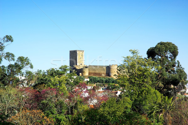 Paisagem castelo região Portugal edifício parede Foto stock © inaquim
