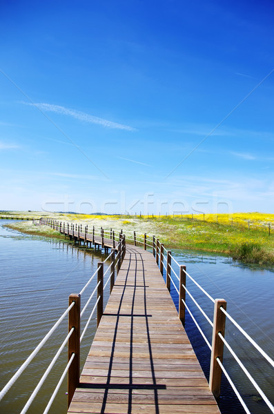 Fából készült híd tó Portugália út nap Stock fotó © inaquim
