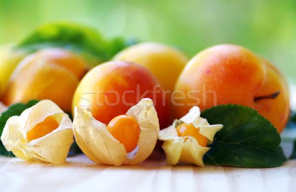 érett szilva zöld levél egészség narancs Stock fotó © inaquim