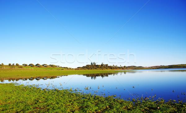Alqueva lake near Amieira village Stock photo © inaquim