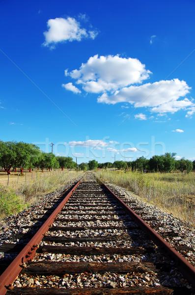 Velho ferrovia campo árvore grama estrada Foto stock © inaquim