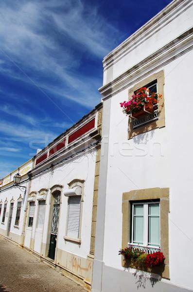 Tipikus utca égbolt virág utazás piros Stock fotó © inaquim