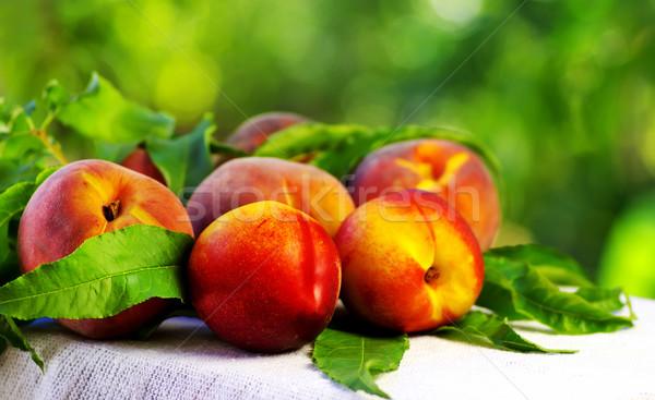 Maduro pêssegos folhas verdes comida maçã fruto Foto stock © inaquim