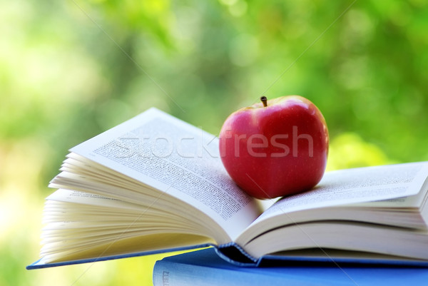 Red apple on a book Stock photo © inaquim