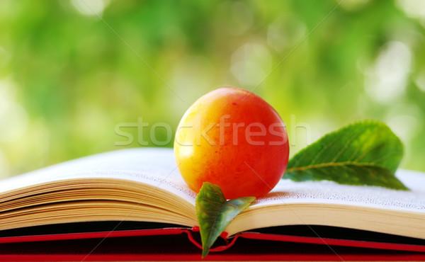 梅 葉 開いた本 フルーツ 色 クリーン ストックフォト © inaquim