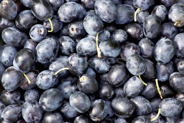 Foto stock: Aceitunas · negras · alimentos · frutas · salud · fondo · campo