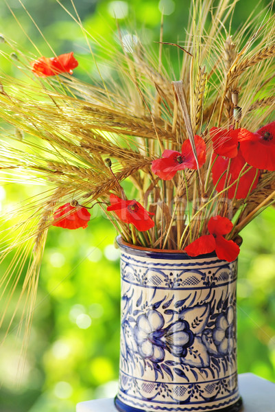 Bouquet of spikes and poppies. Stock photo © inaquim
