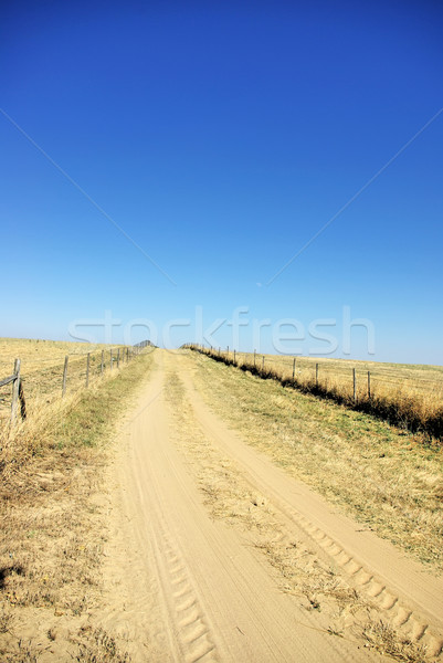 landscape of road  at Alentejo, Portugal.  Stock photo © inaquim