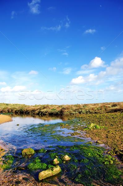 Piccolo fiume nuvoloso cielo acqua primavera Foto d'archivio © inaquim