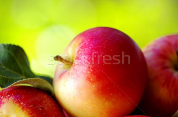 зрелый красный яблоки таблице продовольствие природы Сток-фото © inaquim