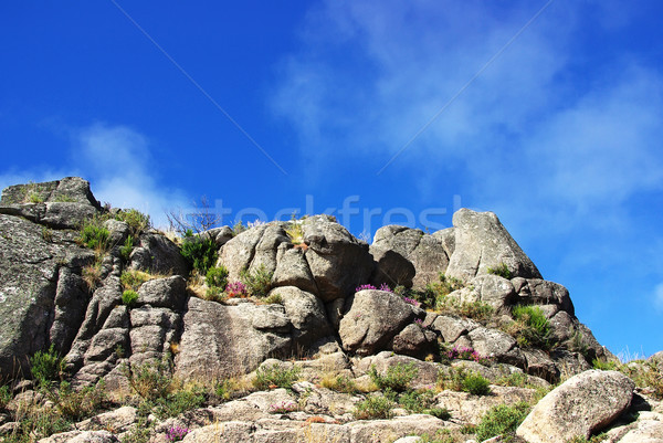 National Park of Peneda Geres, Portugal Stock photo © inaquim