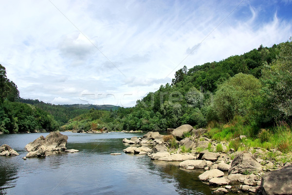Landscape of Minho river, north of Portugal. Stock photo © inaquim