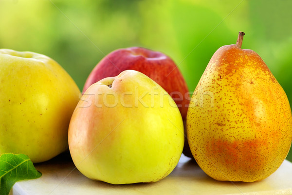 Pear and apples. Stock photo © inaquim