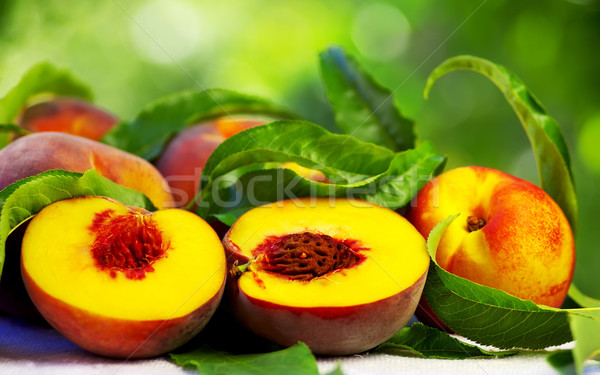 Ripe peaches with green leaves Stock photo © inaquim