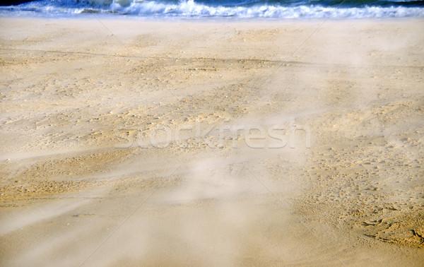 Areia textura areia da praia praia sol abstrato Foto stock © inaquim