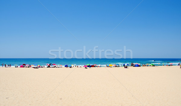 Praia sul Portugal água sol mar Foto stock © inaquim