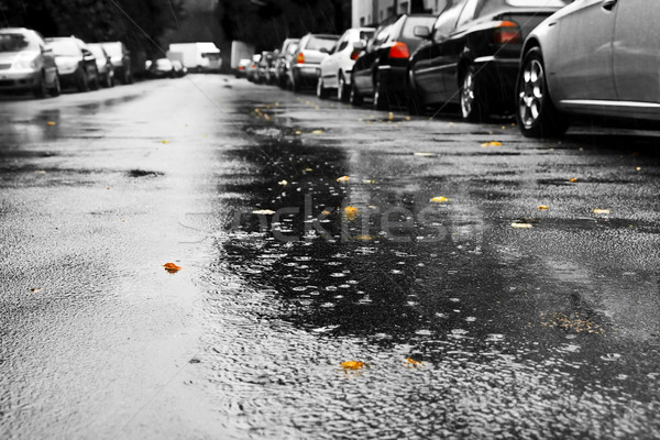 Rain and cars Stock photo © IngaNielsen