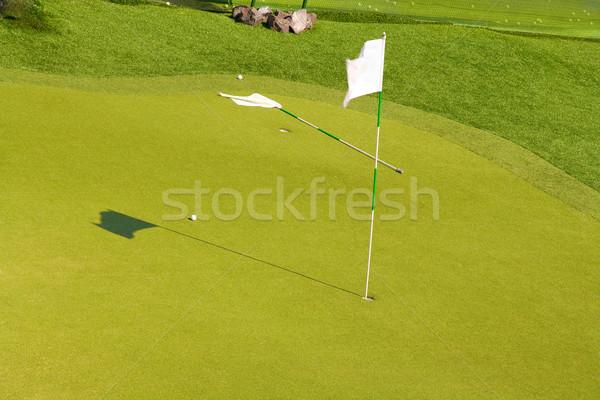 Golfbaan twee vlaggen groene een permanente Stockfoto © IngaNielsen