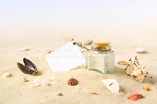 Kaart strand wenskaart zee shell witte Stockfoto © IngaNielsen