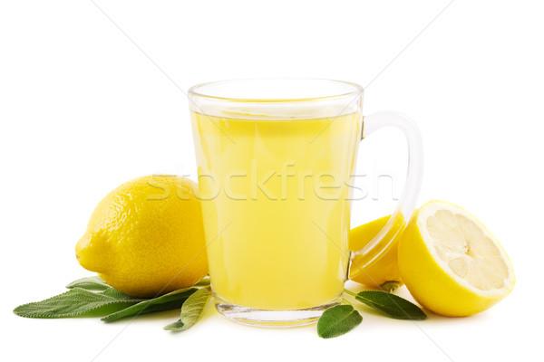 Forró citrom zsálya ital levelek fehér Stock fotó © IngaNielsen
