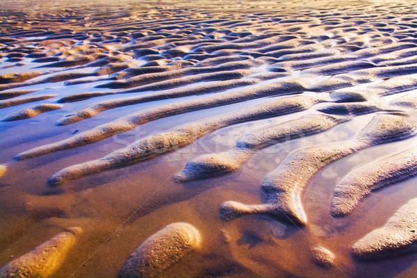 Kum renkli plaj sığ su deniz Stok fotoğraf © IngaNielsen