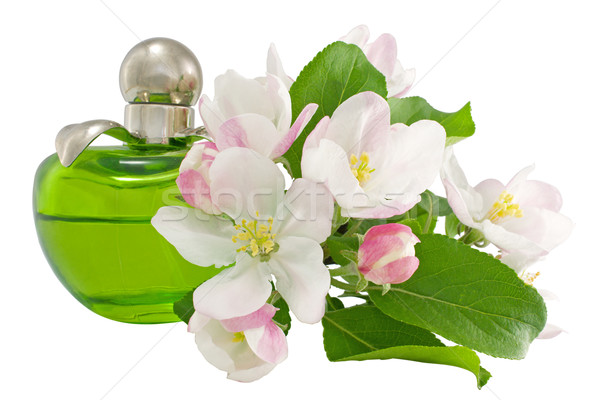 Parfum bloemen witte glas schoonheid Stockfoto © IngridsI