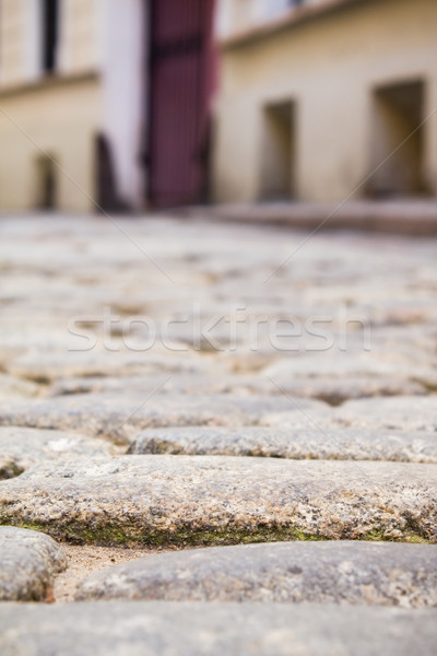 Paving stones. Small street in old town. Stock photo © inoj
